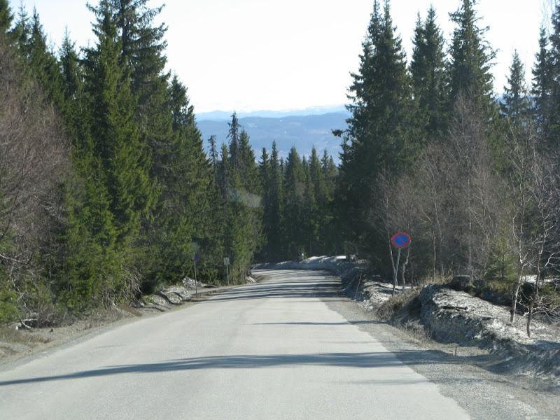 Lange seige bakker oppover gjennom skogen mot Skistua
